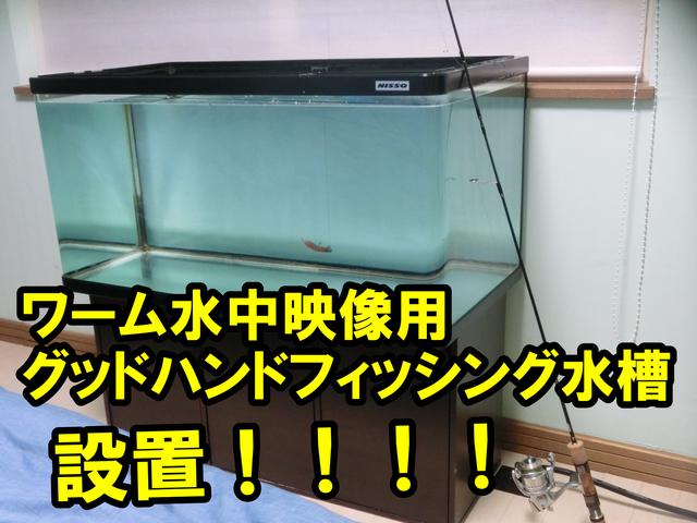 ワーム水中映像用グッドハンドフィッシング水槽設置.jpg